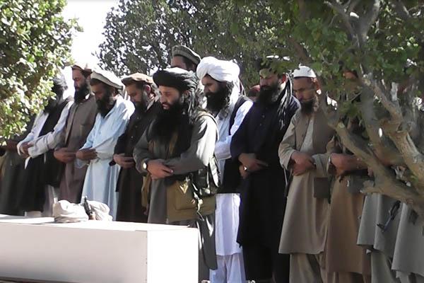 HO—Tehreek-e-Taliban Pakistan